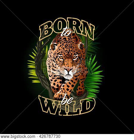 Image Of Panther In The Jungle. Fierce Staring Leopard. Born To Be Wild. Illustration Of Many Colors