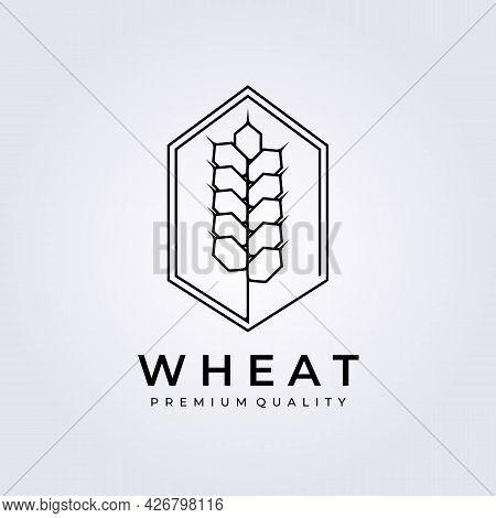 Simple Line Wheat Logo Badge Vector Illustration Design Line Art Linear Outline Monoline Seeds