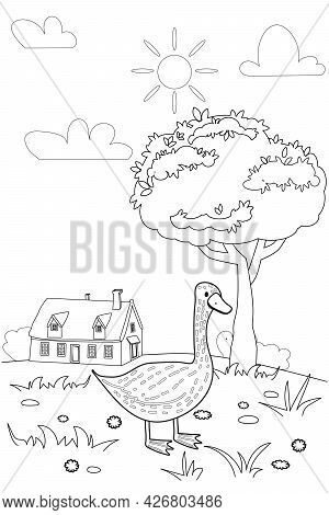 Cute Goose Farm Animals Coloring Book Educational Illustration For Children. Rural Landscape Colouri