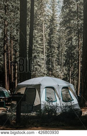 Tent at a campsite in the woods