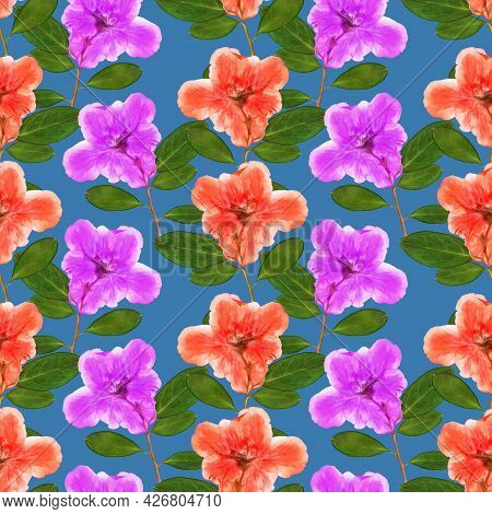 Azalea. Illustration, Texture Of Flowers. Seamless Pattern For Continuous Replication. Floral Backgr