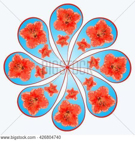 Mandala From Dried Pressed Flowers, Petals. Azalea. Mandala Is Symbol Of Buddhism, Hinduism, Yoga. P