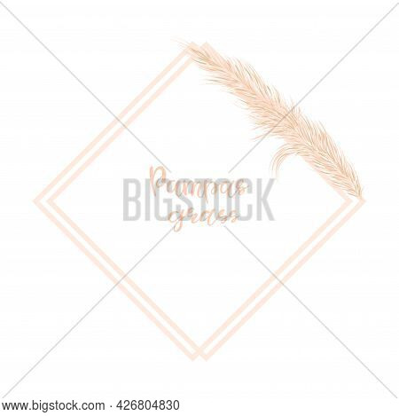 Background With Dry Pampas Grass. Decor Of Invitations And Postcards In The Boho Style. Vector Illus