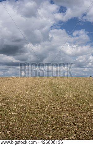An Agricultural Field In Swabian Alb With Plenty Of Jurassic Limestone Pebbles