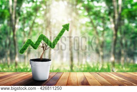 Small Plant In Pot Shaped Like Growing Graph. Business Growth Concept. Planning Savings Money Concep