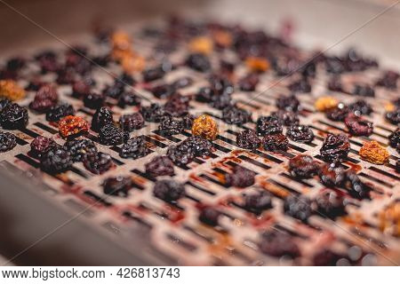 The Process Of Cooking Dry Red Cherries, Yellow Cherries In An Electric Automatic Dryer At Home.