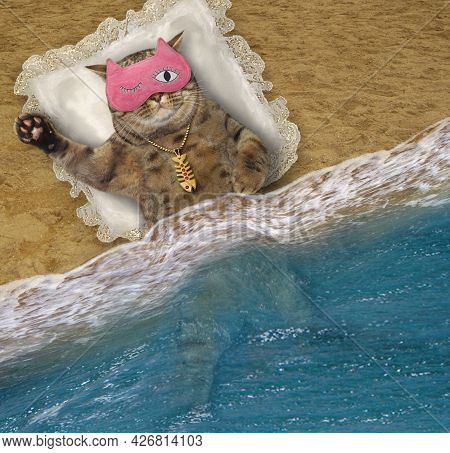A Beige Cat In A Pink Mask Sleeps On A Pillow On The Beach Of The Sea.