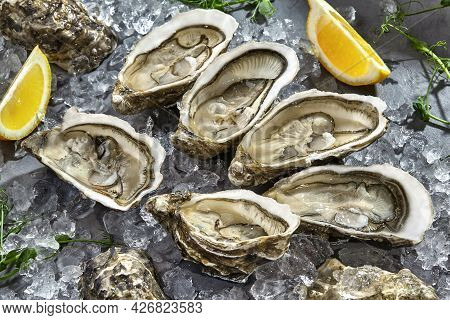 Six Fresh Raw Oysters In Shells Halves On Ice With Lemon