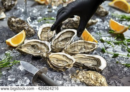 Hand In Glove Reaching For Oysters Served In Open Shells