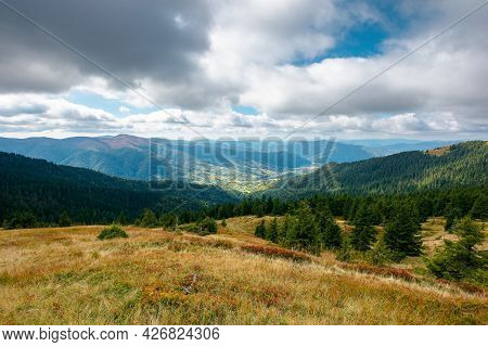 Mountain Landscape In Dramatic Weather. Beautiful Carpathian Countryside In Autumn. Coniferous Trees