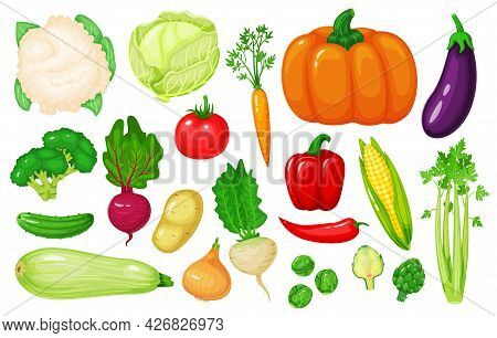 Cartoon Vegetables. Carrot, Corn, Pepper, Celery, Cauliflower, Broccoli, Beetroot, Onion, Cucumber.