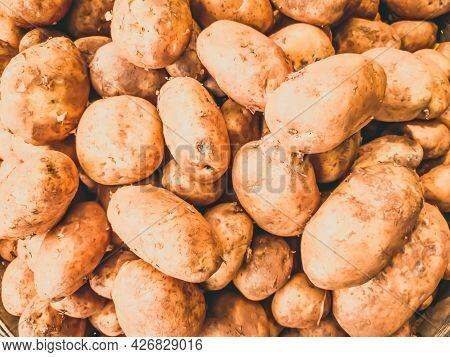 Close-up Heap Of Potatoes. Young Fresh Organic Starch Nourishing Nourishing Source Raw Vegetable On