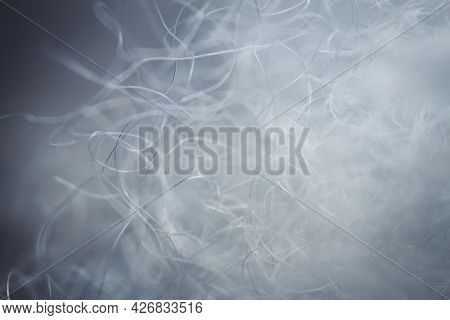 Extreme Macro Of Polyester Stable Fiber. Selective Focus, Shallow Depth Of Field.