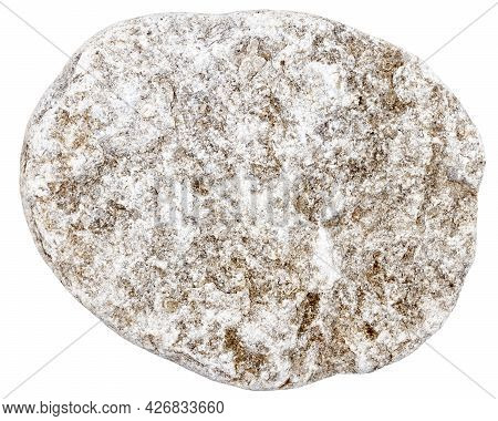 Top View Of Single Gray Pebble Isolated On White Background.
