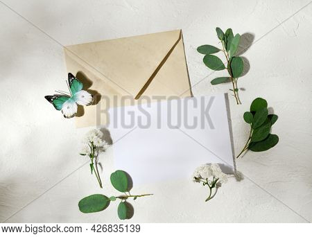 Beautiful arrangement of empty card, envelope, butterfly, leaves and flowers