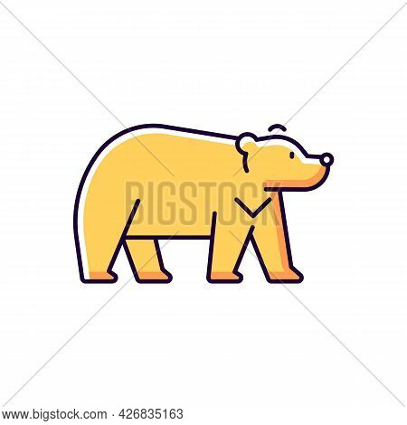 Formosan Bear Yellow Rgb Color Icon. Isolated Vector Illustration. White-throated Taiwanesse Mammal.