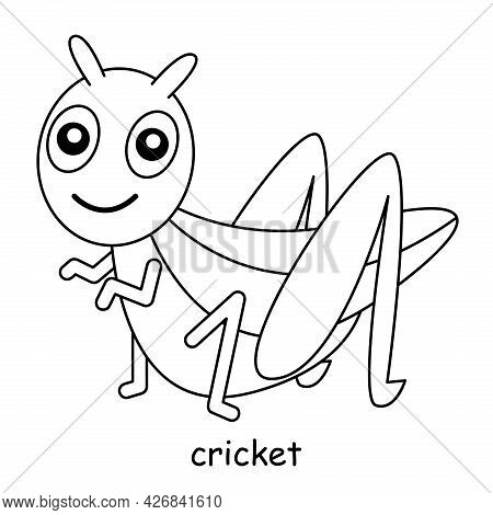 Children Coloring On The Theme Of Animal Vector, Cricket