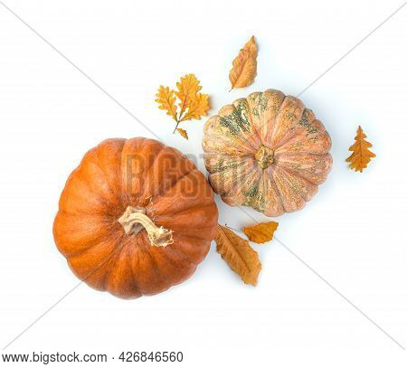 Pumpkins And Autumn Foliage On A White Background. Top View.