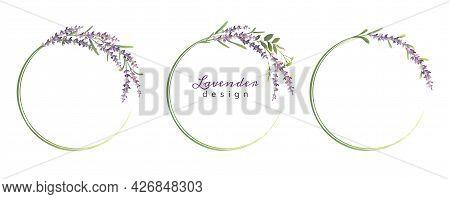 Set Of Lavender Colorful Wreaths Or Frames. Vector Illustration