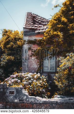 A Vertical Shot Of A Tumble-down Old Beautiful House Facade With A Pink Peeled Wall And Dilapidated