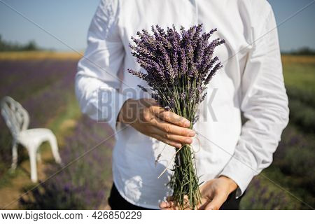 Farmer Holding A Bouquet Of Lavender In Lavender Field On Sunset