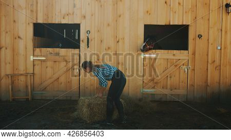 Female Horse Owner Picking Up Hay Bundle From The Floor To Feed Her Horses. View From The Horse Stab