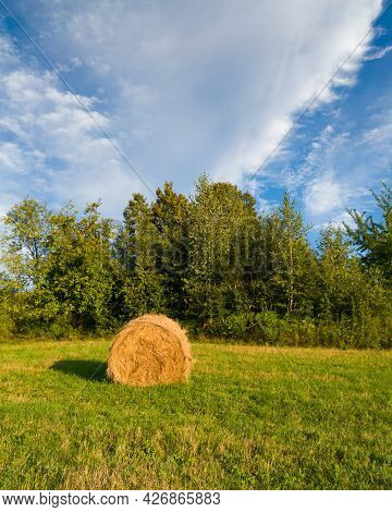 Country Scene With Single Hay Roll Bale In Field Against Grove During Sunny Summer Day With Clouds I