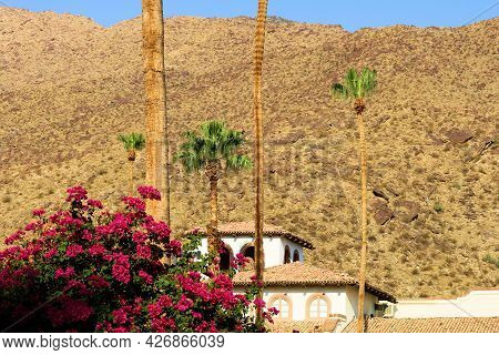 Building With Spanish Colonial Architectural Design Besides Palm Trees And Plants With Flower Blosso