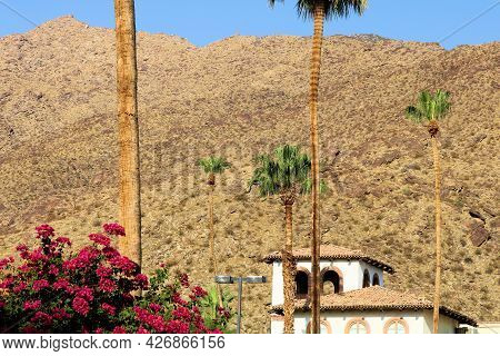 Historical Spanish Colonial Style Building Besides Lush Plants, Flowers, And Palm Trees With Arid Mo