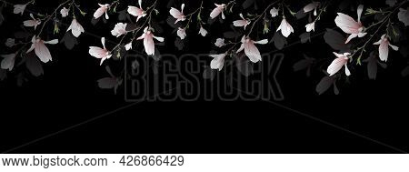 Seamless Frame Made Of Magnolia Flower. Realistic Bouquet, Isolated On A Black Background. A Spring