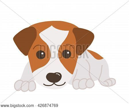Little Jack Russel Terrier. Cartoon Style. Vector Isolated On White Background.