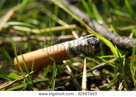 Fag end in grass