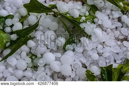 Extreme Weather Hailstorm With Hail And Leaves.  Icy Hailstones After Damaging Hailstorm.