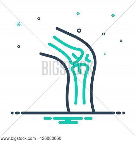 Mix Icon For Cartilage Disease Femur Fracture Rheumatoid Painful Orthopedic Knee Joint Injury