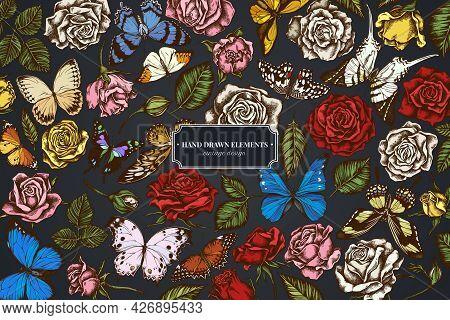 Floral Design On Dark Background With Menelaus Blue Morpho, Giant Swordtail, Blue Morpho, Lemon Butt