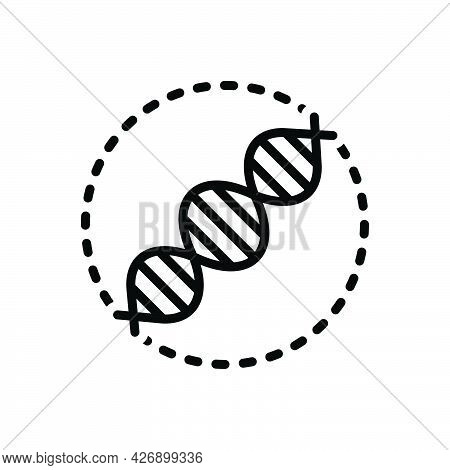 Black Line Icon For Replication Reproduction Dna Helix  Forensic Biotechnology Genetic