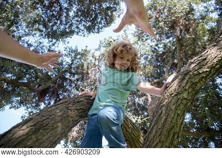 Fathers Hand. Father Parent Boy Climb Branches Of Tree.