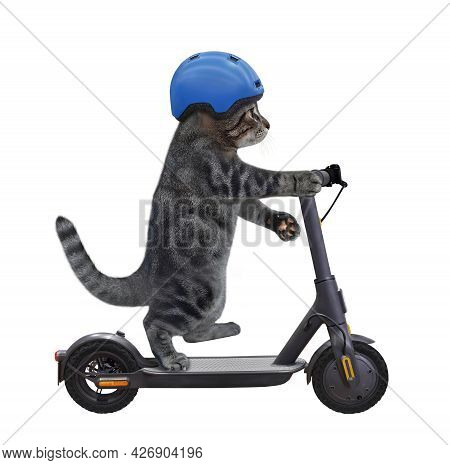 A Gray Cat In A Bicycle Helmet Is Riding A Black Electric Scooter. White Background. Isolated.