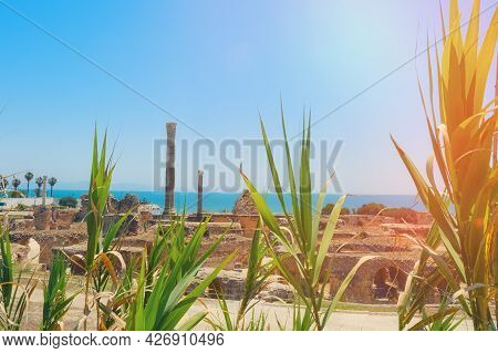 View Of Anthony Terms By The Sea. Excavation Of The Carthage Dungeon During The Punic Wars. Tunisia