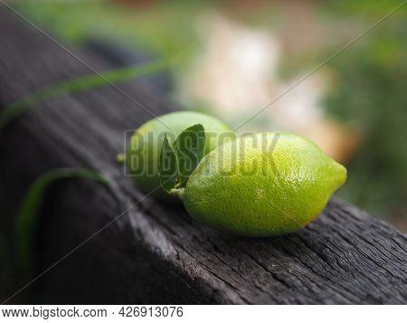Two Lemon On Brown Wooden, Plant Sour Taste Fruit On Blurred Nature Background, Food
