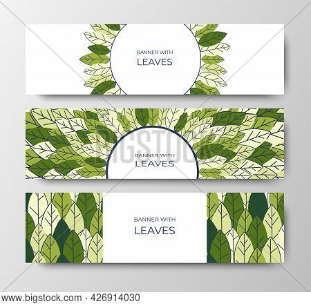 Set Of Horizontal Banners For Advertising, Invitations, Internet Sites From Colorful Leaves. Summer