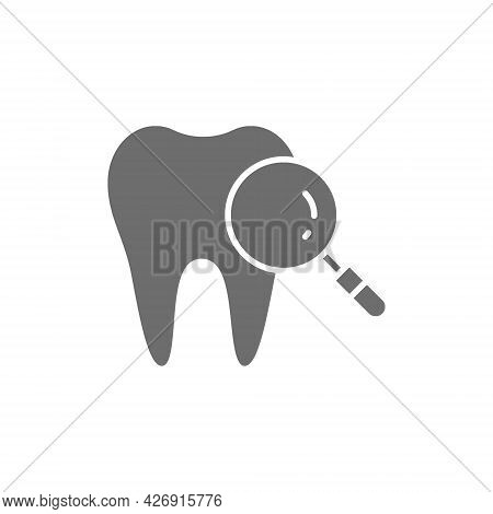 Dental Care, Tooth With Magnifier Loupe, Medical Tooth Check Grey Icon.