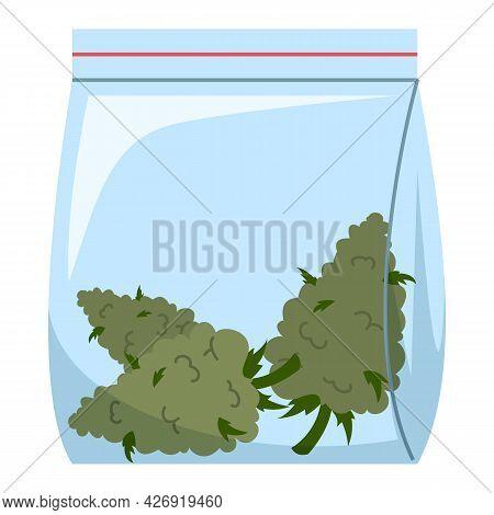 Marijuana Buds In Plastic Bag Vector Isolated