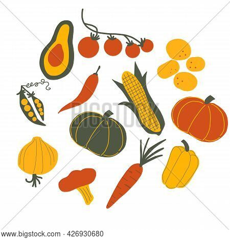 Vector Vegetables Food On White Background. Colored Farm Products. Hand Drawn Fresh Color Vegetables