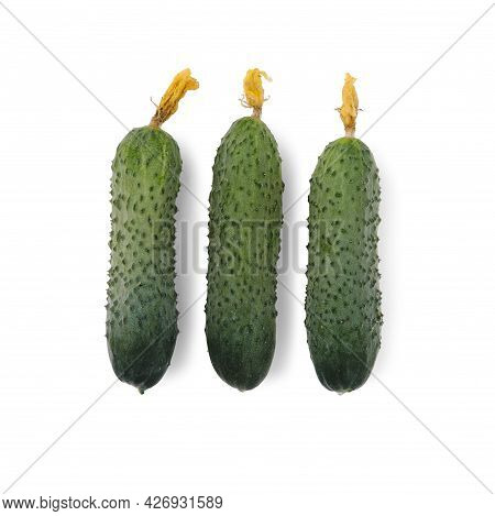 Three Cucumbers In Flat Lay Isolated On White.