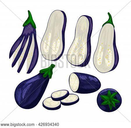 Dark Purple Fresh Set Of Eggplant Fruit.