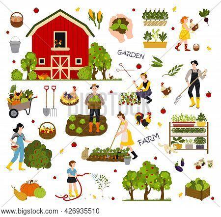 Agricultural Work. Farming Activity Vector. Farming Activity Illustration, Flat Farmers. Garden, Far