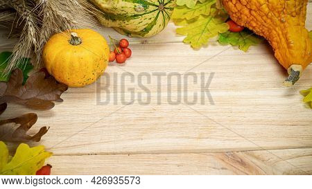 Autumn Flat Lay. Natural Harvest With Wheat Grain Ear Orange Pumpkin, Fall Dried Leaves, Red Berries