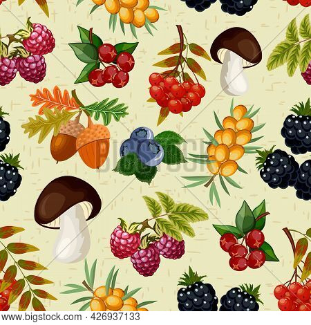 Colored Pattern Of Berries And Mushrooms.mushrooms, Acorns And Wild Berries On A Colored Background