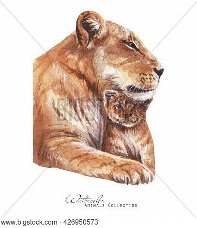 Lioness  And Cub Portrait. Lions Family Watercolor Illustration